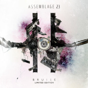 The Noise Inside My Head - Assemblage 23