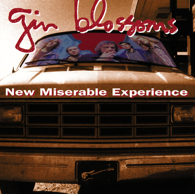 Hey Jealousy - Gin Blossoms