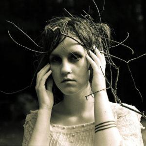 Woods - Johanna Warren