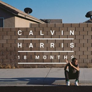 Sweet Nothing (feat. Florence Welch) - Calvin Harris