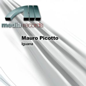 Iguana (Blank & Jones Remix) - Mauro Picotto