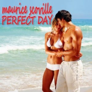 Perfect Day (Comfort Version) - Maurice Scoville