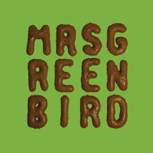 Shooting Stars & Fairy Tales - Mrs. Greenbird