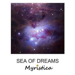 Where We Belong - Myristica