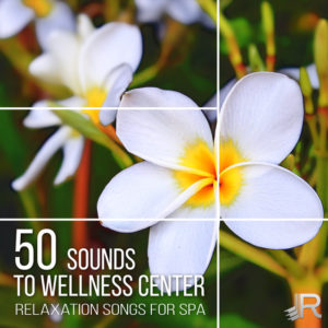 Wellness Center Sounds - Spa Music Relaxation Meditation