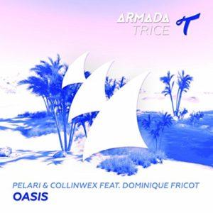 Oasis (feat. Dominique Fricot) - Pelari & CollinWex
