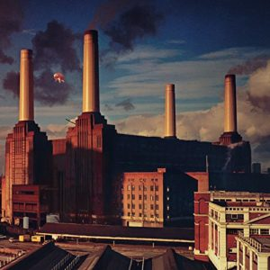 Pigs (Three Different Ones) - Pink Floyd