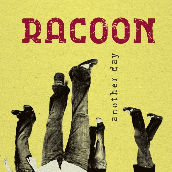 Laugh About It - Racoon