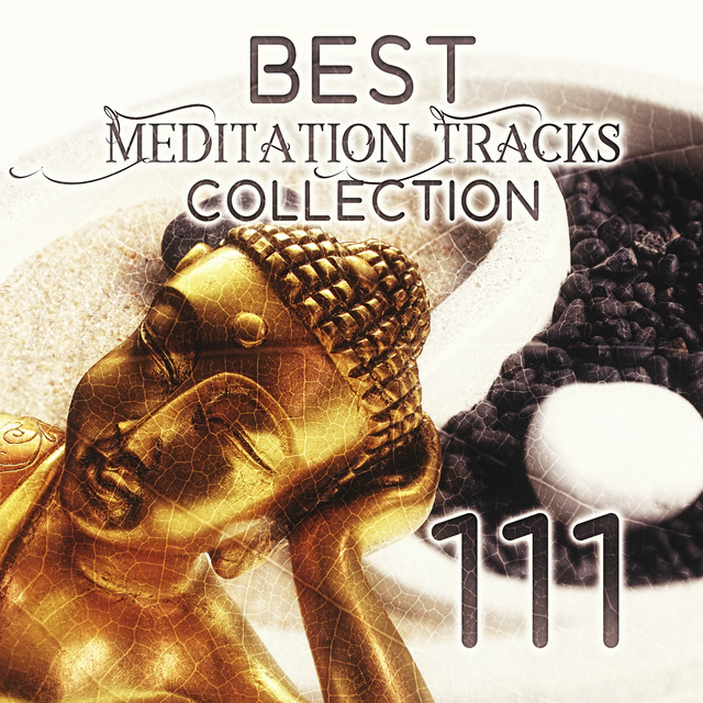 Forest Sounds: Asian Meditation Music - Tranquility Spa Universe